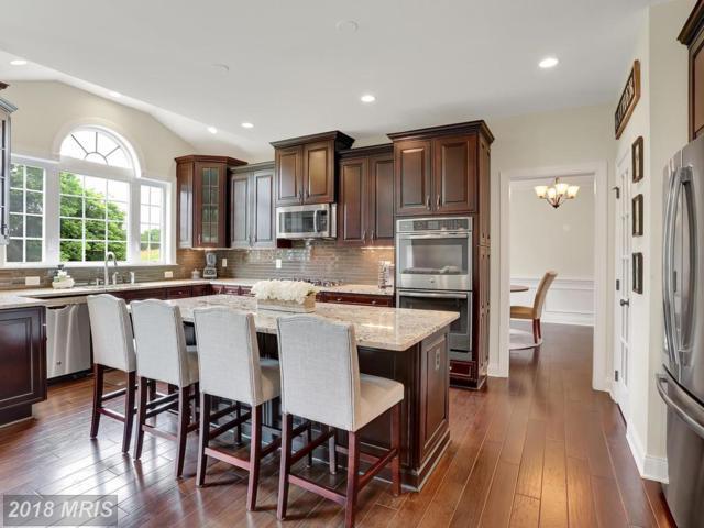 41433 Autumn Sun Drive, Aldie, VA 20105 (#LO10268835) :: Colgan Real Estate
