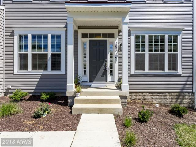 101 Upper Heyford Place, Purcellville, VA 20132 (#LO10272925) :: RE/MAX Executives