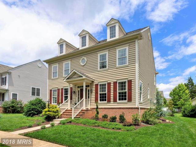 23235 Christopher Thomas Lane, Ashburn, VA 20148 (#LO10276611) :: The Greg Wells Team