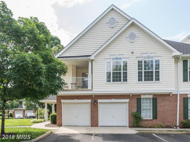 25272 Riffleford Square #200, Chantilly, VA 20152 (#LO10276992) :: The Greg Wells Team
