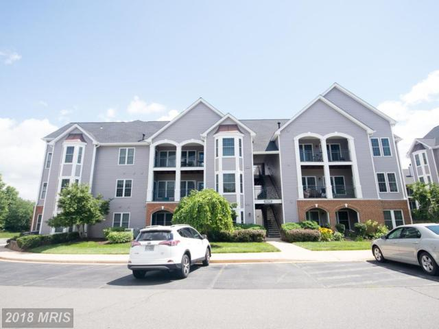 46598 Drysdale Terrace #201, Sterling, VA 20165 (#LO10281617) :: Charis Realty Group