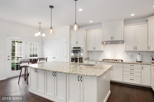 42838 Edgegrove Heights Terrace, Ashburn, VA 20148 (#LO10281871) :: LoCoMusings