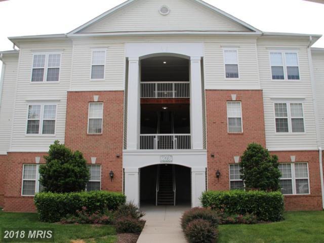 22687 Blue Elder Terrace #102, Ashburn, VA 20148 (#LO10283807) :: Pearson Smith Realty