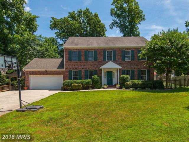 20316 Broad Run Drive, Sterling, VA 20165 (#LO10285434) :: LoCoMusings