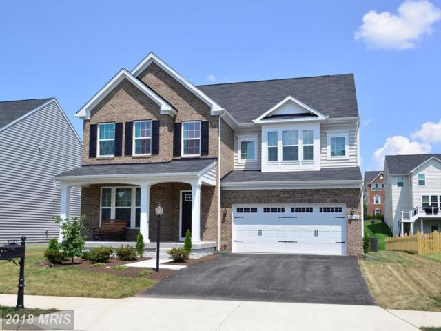25756 Racing Sun Drive, Aldie, VA 20105 (#LO10287724) :: The Maryland Group of Long & Foster