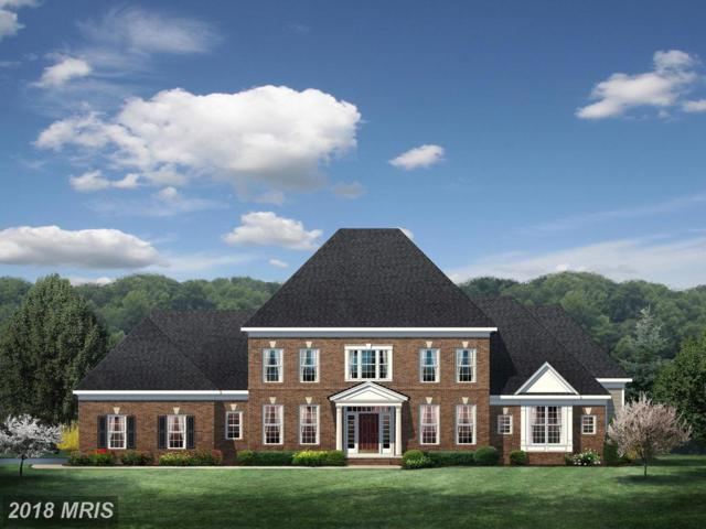 Waterford Meadow Place, Hamilton, VA 20158 (#LO10287951) :: LoCoMusings