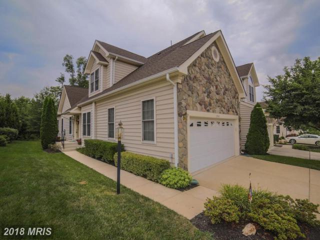 25141 Fortitude Terrace, Chantilly, VA 20152 (#LO10289865) :: Colgan Real Estate