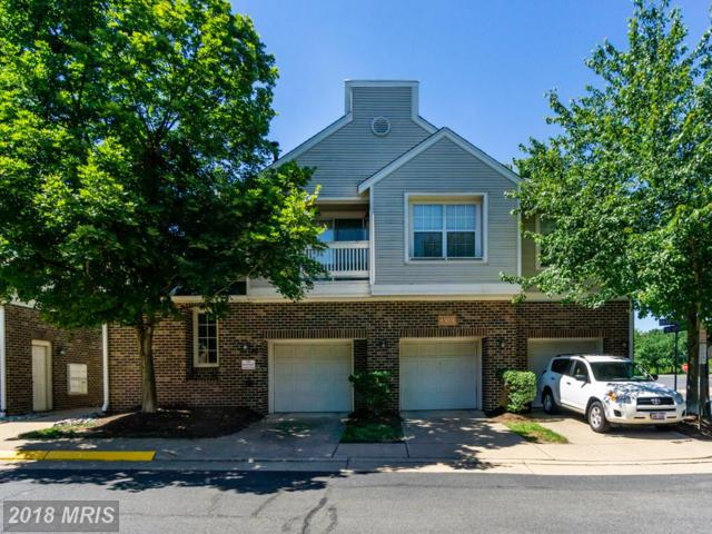 45051 Brae Terrace #101, Ashburn, VA 20147 (#LO10294224) :: RE/MAX Executives