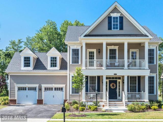 24375 Carolina Rose Circle, Aldie, VA 20105 (#LO10295700) :: The Maryland Group of Long & Foster