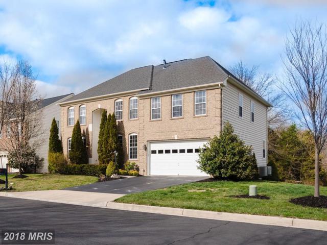42090 Pepperbush Place, Aldie, VA 20105 (#LO10296679) :: SURE Sales Group