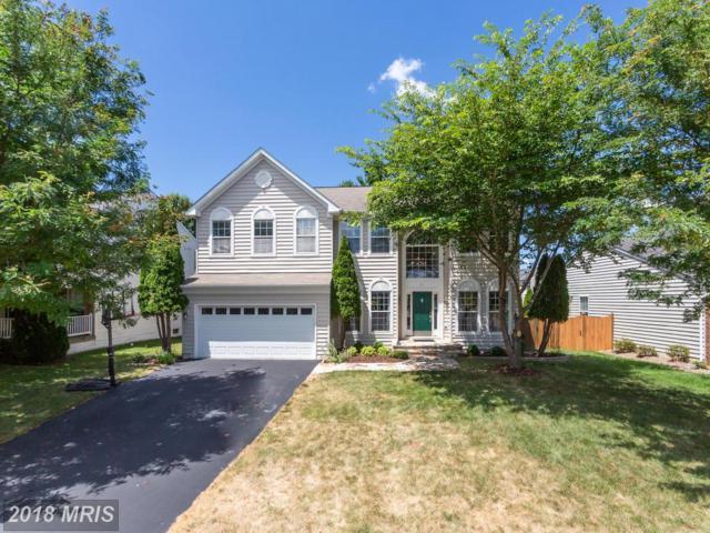 227 Alpine Drive SE, Leesburg, VA 20175 (#LO10297076) :: Provident Real Estate