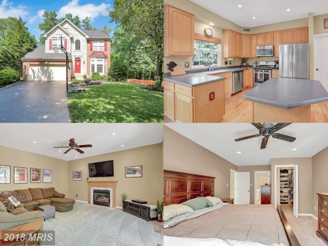 43662 Kenai Court, Chantilly, VA 20152 (#LO10297169) :: Provident Real Estate