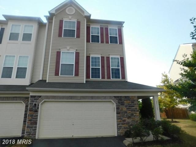 25167 Hummocky Terrace, Aldie, VA 20105 (#LO10298855) :: The Vashist Group