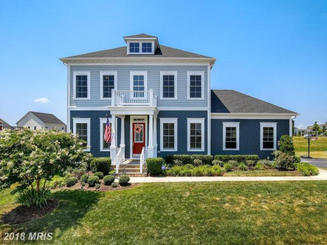 23709 Lentils Lane, Ashburn, VA 20148 (#LO10299264) :: Colgan Real Estate