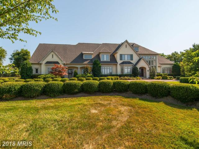 40471 Grenata Preserve Place, Leesburg, VA 20175 (#LO10299694) :: The Bob & Ronna Group