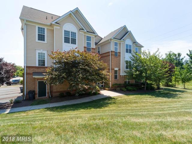 20365 Belmont Park Terrace #118, Ashburn, VA 20147 (#LO10300990) :: Circadian Realty Group