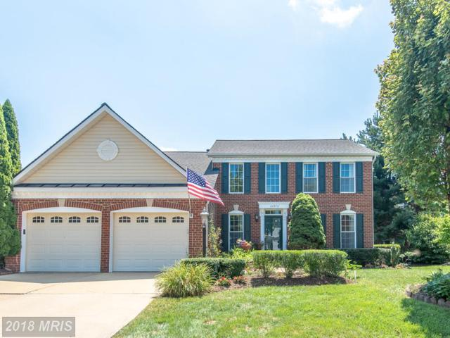 47773 Rafter Court, Sterling, VA 20165 (#LO10302349) :: The Greg Wells Team