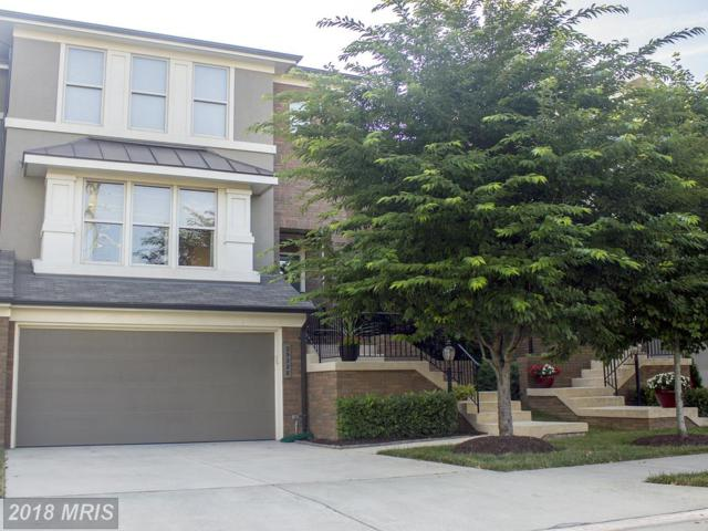 23328 Evening Primrose Square, Ashburn, VA 20148 (#LO10302928) :: The Belt Team