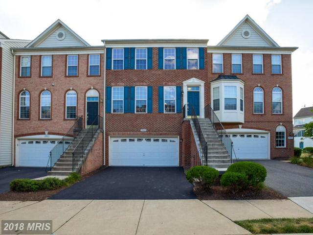 20029 Northville Hills Terrace, Ashburn, VA 20147 (#LO10303265) :: The Greg Wells Team