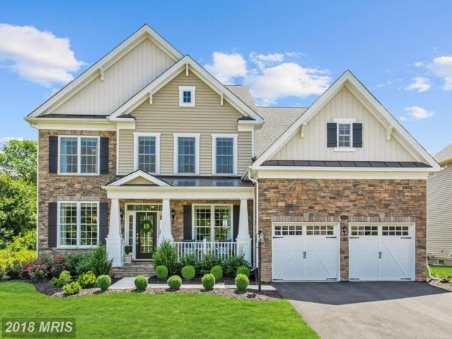 24045 Audubon Trail Drive, Aldie, VA 20105 (#LO10303360) :: The Maryland Group of Long & Foster