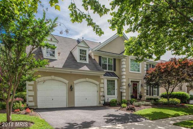 43739 Mink Meadows Street, Chantilly, VA 20152 (#LO10305395) :: Bob Lucido Team of Keller Williams Integrity