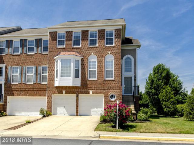 22651 Narragansett Terrace, Ashburn, VA 20148 (#LO10305981) :: Bob Lucido Team of Keller Williams Integrity
