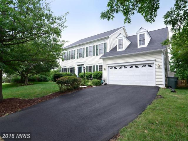 43149 Wintergrove Drive, Ashburn, VA 20147 (#LO10309363) :: Pearson Smith Realty