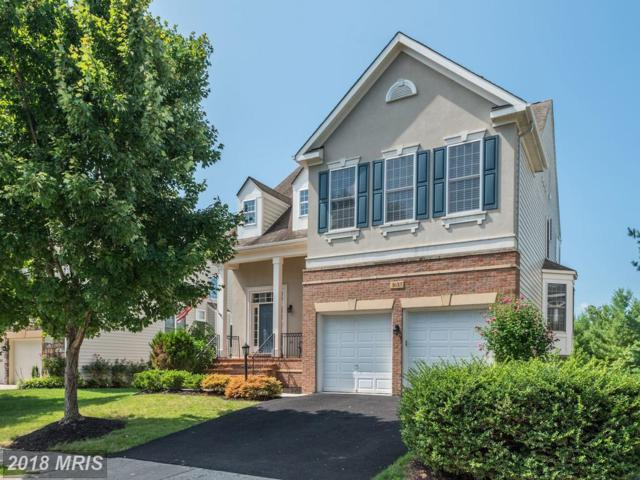 1633 Chickasaw Place NE, Leesburg, VA 20176 (#LO10310137) :: RE/MAX Executives