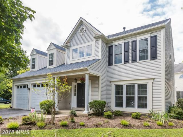 46567 Carlyle Court, Sterling, VA 20165 (#LO10310902) :: The Greg Wells Team