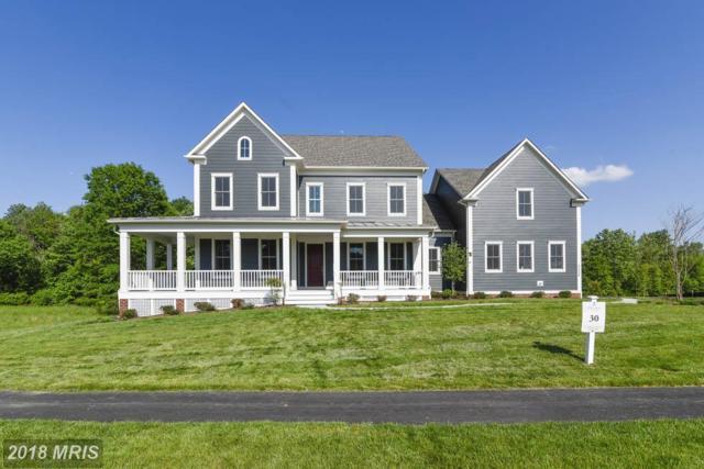 23056 Chambourcin Place, Ashburn, VA 20148 (#LO10311283) :: Labrador Real Estate Team
