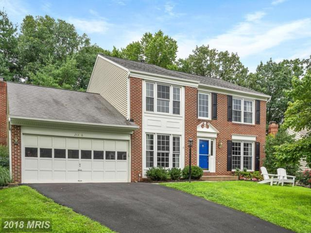 21358 Clearwater Court, Ashburn, VA 20147 (#LO10313664) :: Pearson Smith Realty