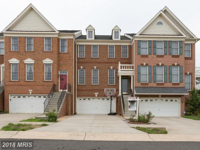 25240 Whippoorwill Terrace, Chantilly, VA 20152 (#LO10313876) :: The Greg Wells Team