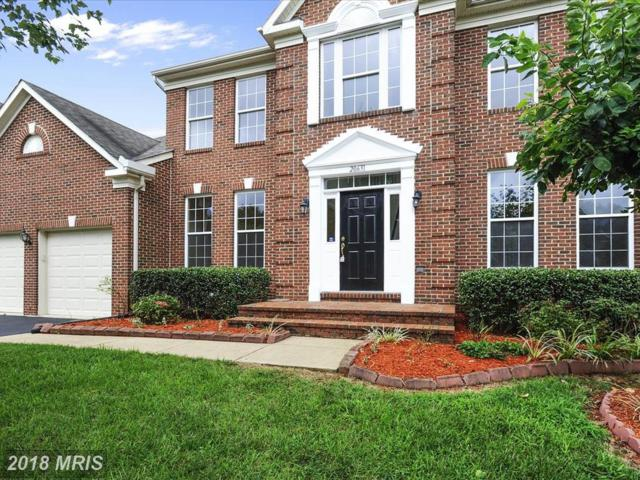 20631 Winterwood Way, Sterling, VA 20165 (#LO10314766) :: SURE Sales Group