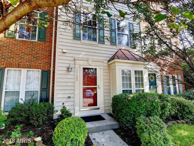 44482 Watertown Terrace, Ashburn, VA 20147 (#LO10315734) :: SURE Sales Group