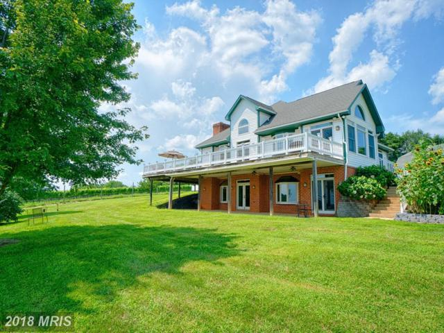 18105 Tranquility Road, Purcellville, VA 20132 (#LO10315940) :: LoCoMusings