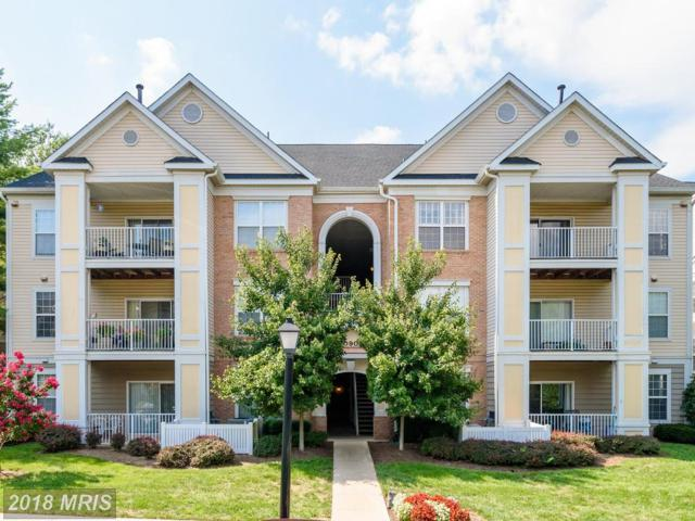 20903 Cedarpost Square #301, Ashburn, VA 20147 (#LO10318723) :: RE/MAX Executives