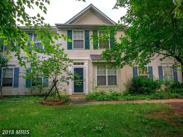 20448 River Ripple Square, Sterling, VA 20165 (#LO10320280) :: The Vashist Group