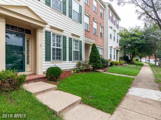 42826 Cedar Hedge Street, Chantilly, VA 20152 (#LO10345210) :: Bic DeCaro & Associates
