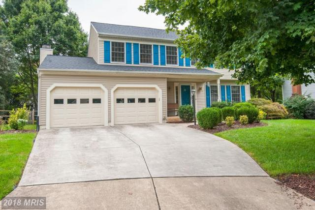 20663 Ashleaf Court, Sterling, VA 20165 (#LO10346754) :: The Bob & Ronna Group