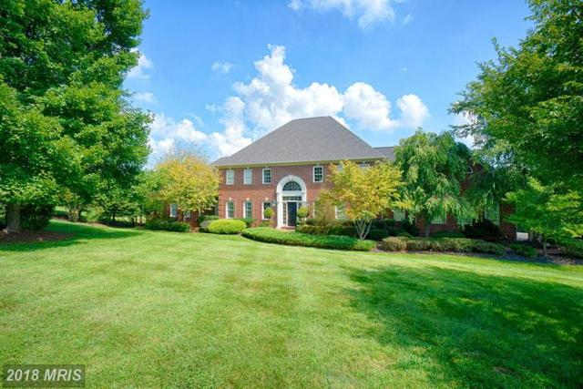 16730 Whirlaway Court, Leesburg, VA 20176 (#LO10352130) :: Network Realty Group