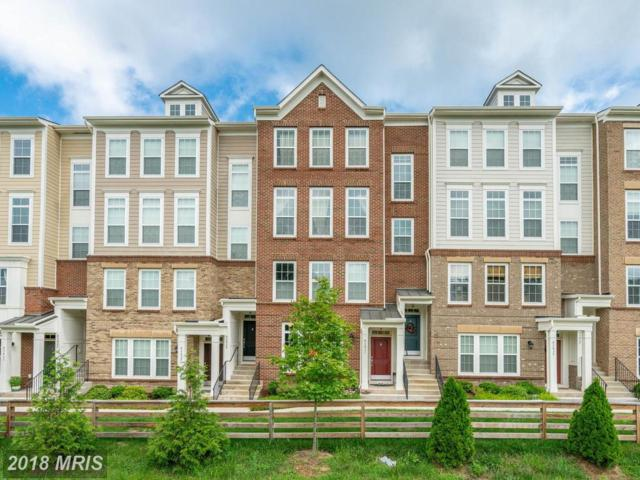 43431 Town Gate Square #43431, Chantilly, VA 20152 (#LO9011107) :: Pearson Smith Realty