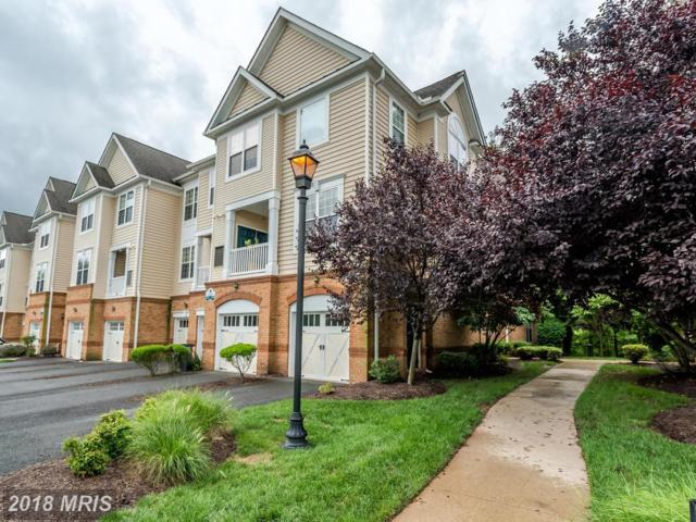 20385 Belmont Park Terrace #116, Ashburn, VA 20147 (#LO9011818) :: Circadian Realty Group