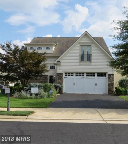 44561 Blueridge Meadows Drive, Ashburn, VA 20147 (#LO9012819) :: The Greg Wells Team
