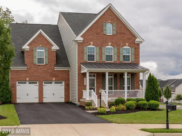 25934 Sycamore Grove Place, Aldie, VA 20105 (#LO9012962) :: Pearson Smith Realty