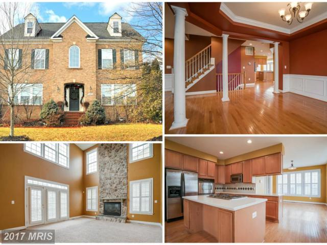 22823 Angelique Drive, Ashburn, VA 20148 (#LO9842767) :: LoCoMusings