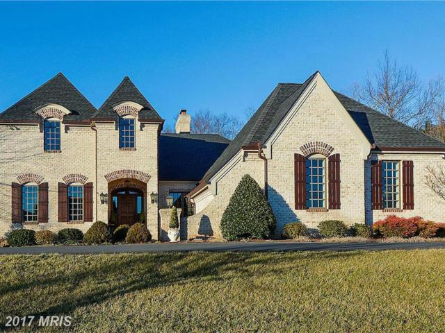 40186 Monroe Valley Place, Aldie, VA 20105 (#LO9872395) :: Pearson Smith Realty