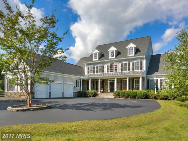 17276 Simpson Circle, Paeonian Springs, VA 20129 (#LO9874270) :: Pearson Smith Realty