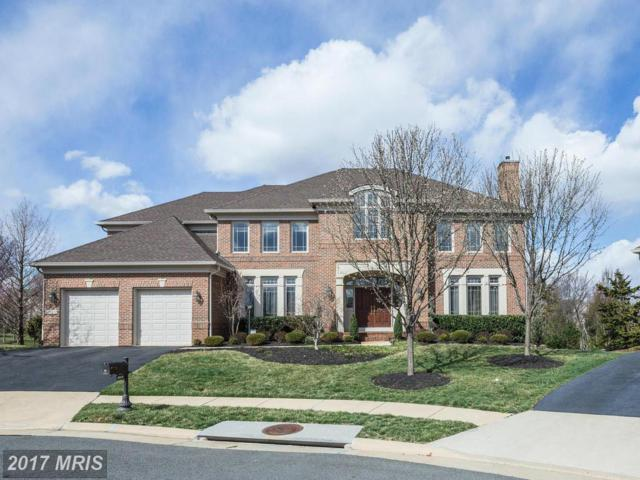 23072 Oglethorpe Court, Ashburn, VA 20148 (#LO9878511) :: LoCoMusings