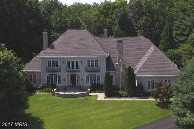 22915 Cobb House Road, Middleburg, VA 20117 (#LO9886757) :: LoCoMusings