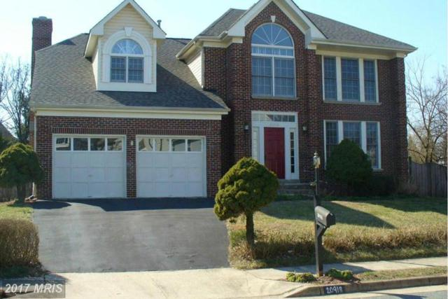20918 Chippoaks Forest Circle, Sterling, VA 20165 (#LO9892206) :: LoCoMusings